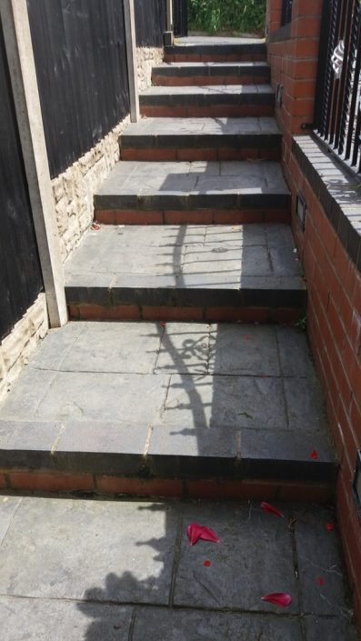 Mrs Bradshaw's Steps Before